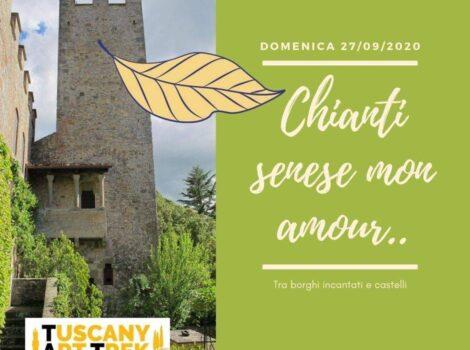 Chianti senese mon amour: escursione nella Berardenga